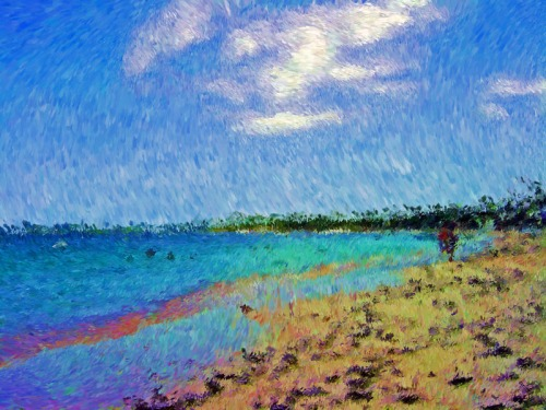 Tropical Visit-Impessionist Painting(1)