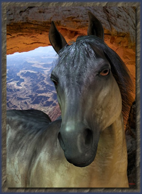 Horse PortraitFramed