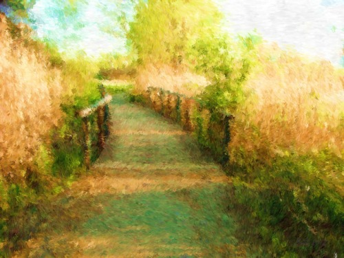 The Right Path (4)