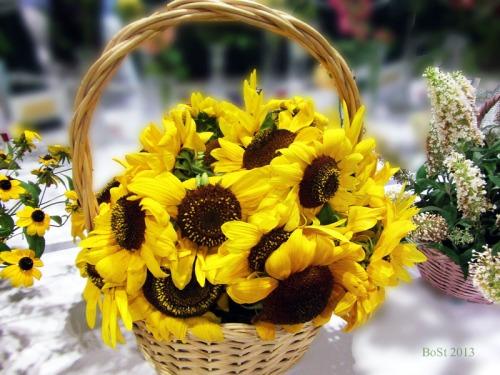 Sunshine in a Basket (20)