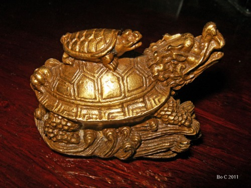 Dragon Headed Turtle  (4)