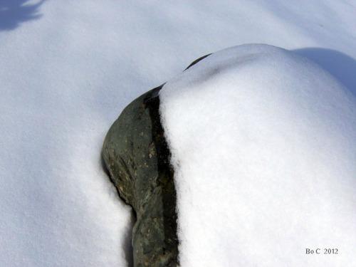 Stone Mind Pics (10)