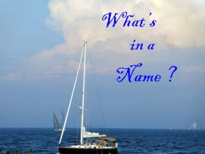 1-What's in a Name