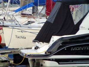 6-Tachila