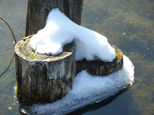 Pics of Spring Thaw (12)