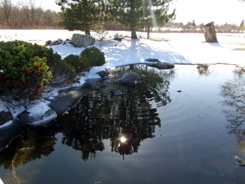 Pics of Spring Thaw (15)