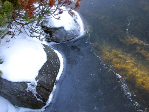 Pics of Spring Thaw (16)