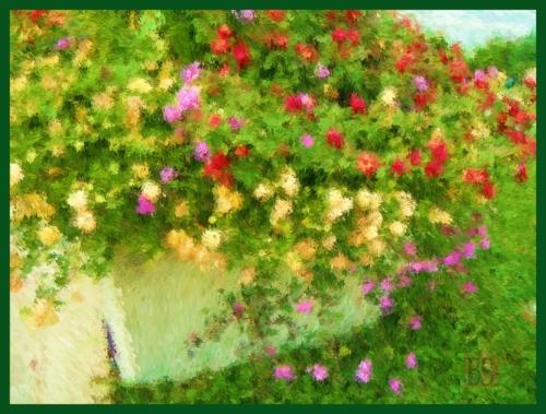 9-Summertime-garden